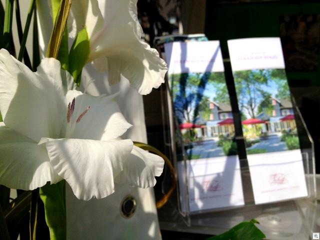 Blumenzeug